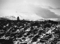 19Ak Mt.Shasta dawn.jpg