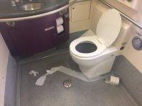 Dirty-Bathroom-e1482361765200.jpg