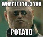 Potato cool.jpg