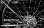Bike tire.jpg