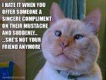 Mustache woman.jpg
