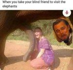Blind elephant.jpg