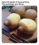 potato Q done.jpg