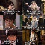 Drunk Potter.jpg