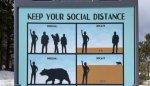 social distance bear.jpeg