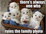 theres_always_one....jpg