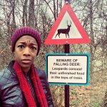 falling deer.jpg