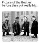 small beatles.jpg