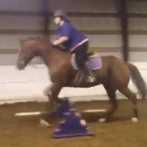 First time over fences!