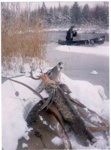 Brule river buck.jpg