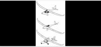Screenshot_2020-11-29 Gekon glider.png