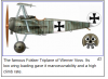 Wener Voss Plane.PNG