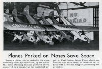 planes_on_noses.jpg