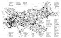 Brewster-F2A-Buffalo-Cutaway.jpg