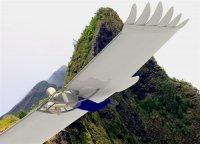 2013-05-21 The Bird Glider AA AB_500x359.jpg