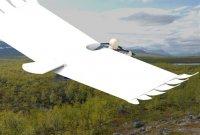2013-05-21 The Bird Glider AA AD_499x335.jpg