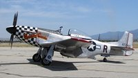 P-51D Buzzin Cuzzin.jpg