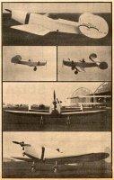 mauboussin hemiptere les ailes 1936-06-18.jpg