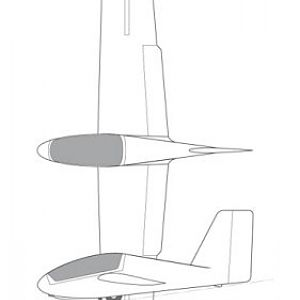 """A tailless """"flying plank"""" sailplane."""