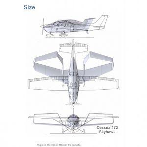 Synergy vs. C172 size
