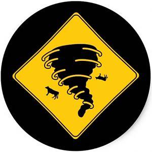 Cyclone Cows