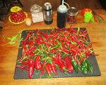 18sep20 peppers (4) sm.JPG