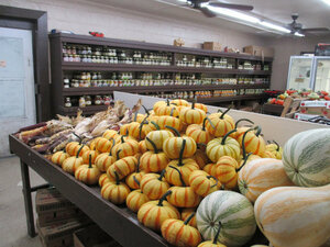 Gourds sep20 (3)a.JPG