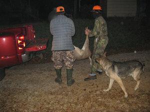 Deer c home (3).jpg