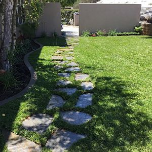 A complete view of backyard landscape design.
