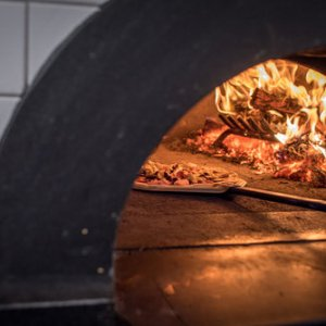 Commercial Wood Fired Pizza Oven for Sale - Polito