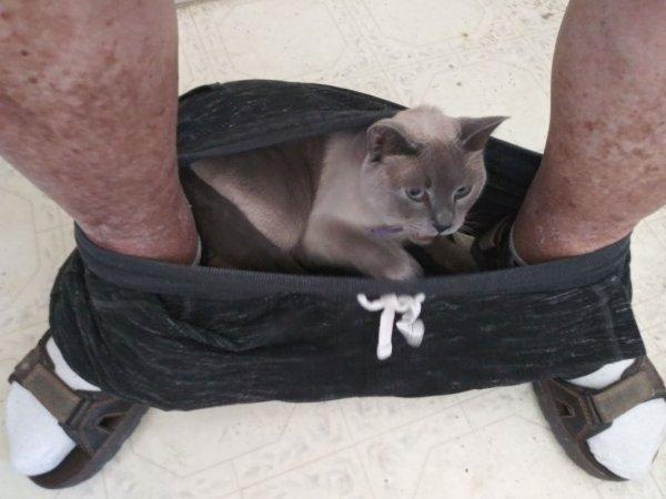Kiki in the Pants.jpg