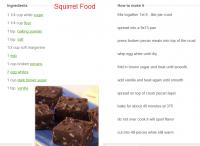 squirrel_food_001.png