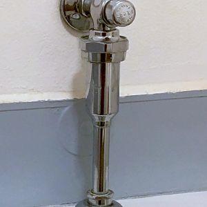Old Flusher