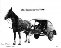 horse-VW.jpg