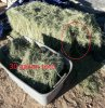 20170615_hay bale size red low res.jpg