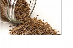dill seeds.jpg