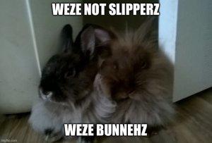 BunnySlipperz.jpg
