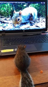 Karen watching her favorite show.jpg