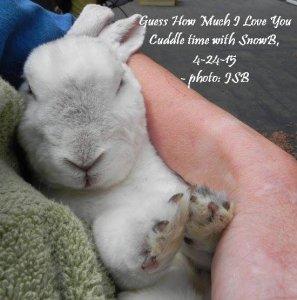 CuddleTimeWSnowB4-24-15.jpg