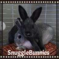SnuggleBunnies
