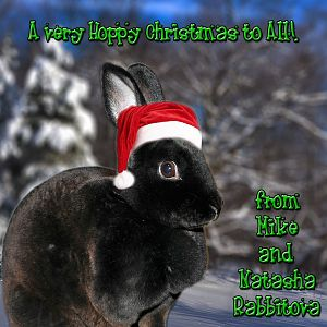 Hoppy Christmas!
