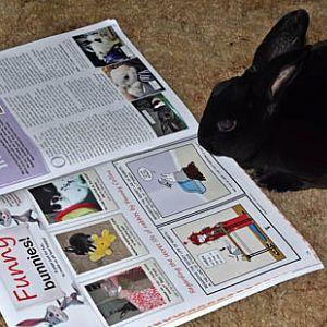 Natasha's in Bunny Mad Magazine