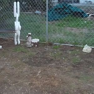 Outdoor pen