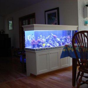 100 Gallon Low Maint Reef