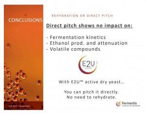 Fermentis Direct Pitch.JPG
