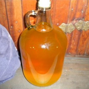spiced apple clearing nicely. I think I will bottle it this fall.