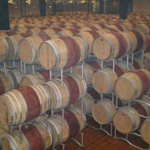 Poliziano Winery