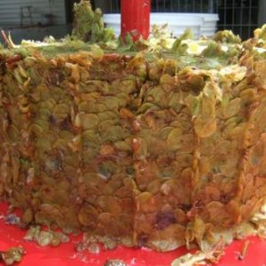 grape cake - makes great compost