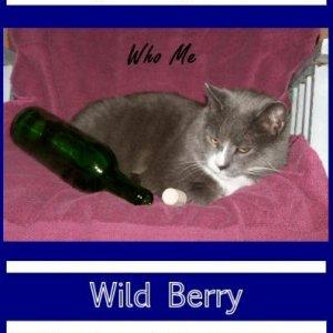 berry port label 2