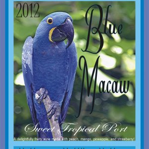 Blue Macaw Sweet Tropical Port